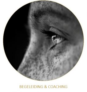 begeleiding-coaching-mindfulness-eindhoven